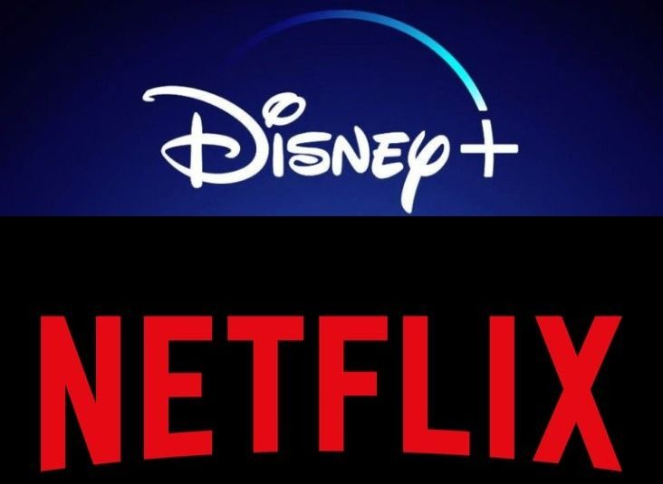 Features of Disney Plus and Netflix